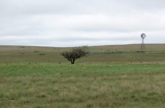 Rita Blanca National Grasslands